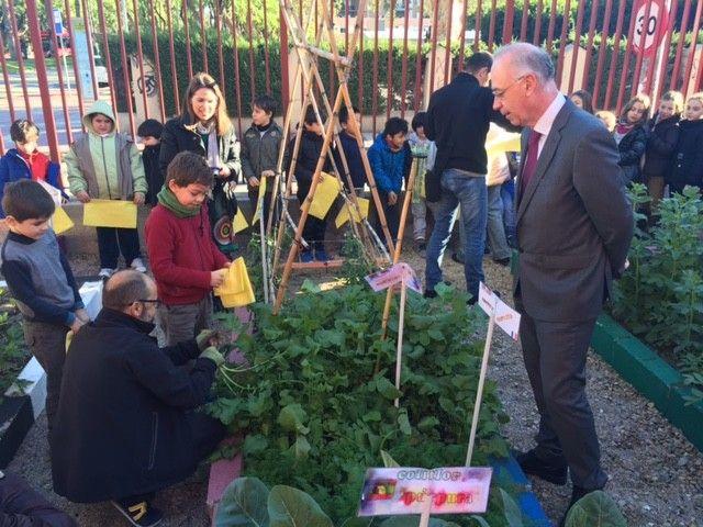 Un total de 35 centros educativos participan en la 'Red de Huertos Escolares ecológicos del municipio de Murcia' (RHEMU), que este año celebra su novena edición y cuenta con la partic ...