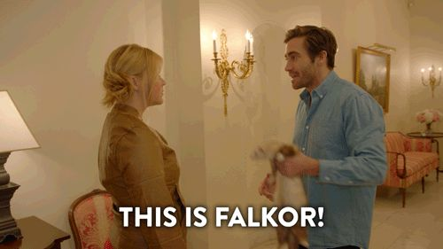 season 4 jake gyllenhaal comedy central amy schumer inside amy schumer ferret catfish katfish this is falkor trending #GIF on #Giphy via #IFTTT http://gph.is/1TG3LDW
