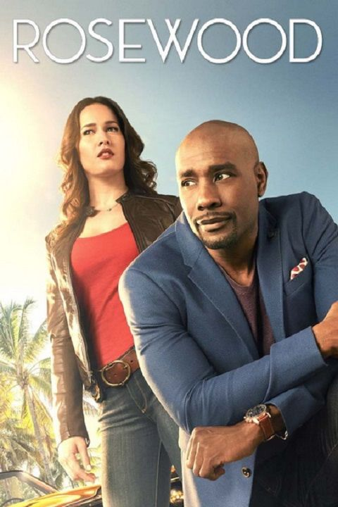 Morris Chestnut plays the role of Dr. Beaumont Rosewood in (22) episodes on the FOX television series Rosewood (2015-2016)