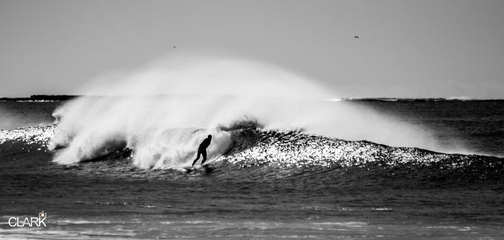 Surfer at Dee Why