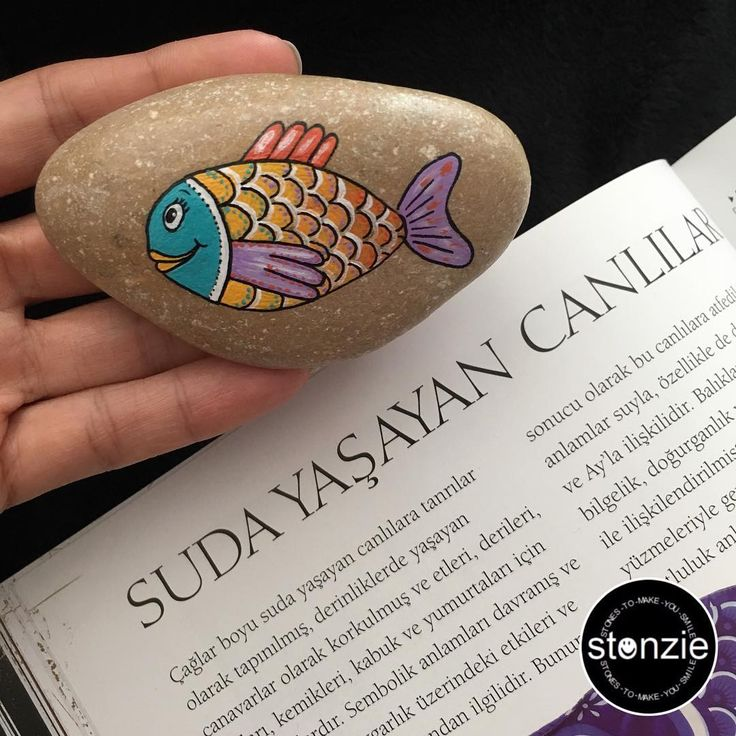 #BALIK doğum günleri devam ederken, ilk zillimiz piyasalarda 🐟🎨😋  Spiritüel bilgelik, doğurganlık ve yeniden hayat bulma ile ilişkilendirilen balık, bir çok kültürde #BEREKET sembolü 🐠🐟🐡〰〰〰〰〰〰 #fish #tasboyama #stonzie #stonziebyidilo #stonepainting #rockpainting #paintedrocks #paintedstones #underwater #seaworld #denizalti