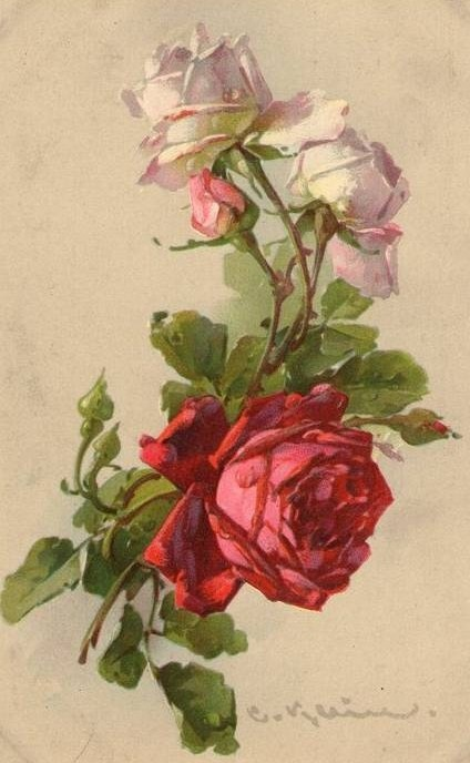 Catherine Klein ~ red and light pink roses