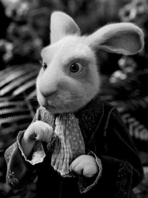 Tim Burton's Alice in Wonderland, 2010.