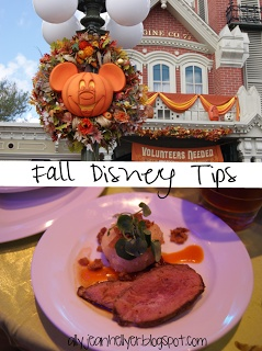 Fall Disney Tips - Fall Disney Tips - Mickey's Not So Scary Halloween Party and the Epcot Food and Wine Festival