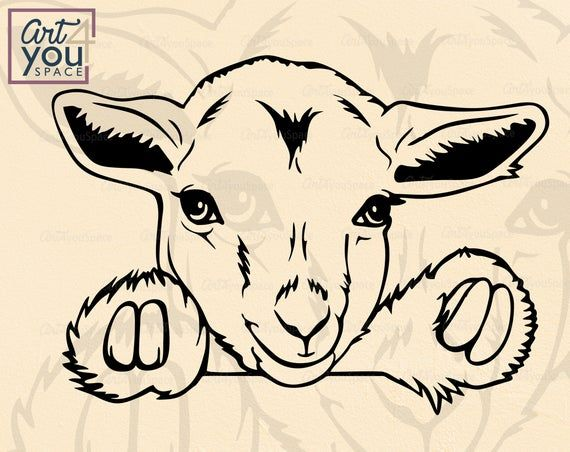 Pygmy Goat Kid Svg Files For Cricut Pet Svg Cute Animal Clipart Farm Peeking Download Head Face Vector Printable Art Png Dxf Cute Animal Clipart Goat Paintings Animal Clipart