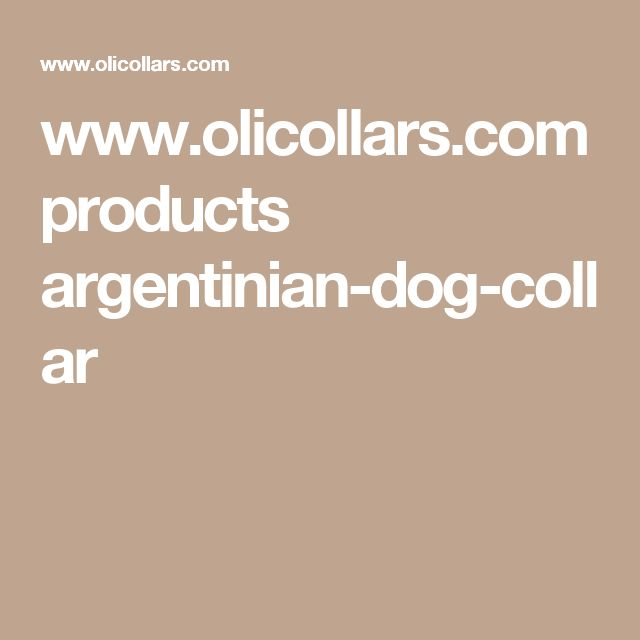 www.olicollars.com products argentinian-dog-collar