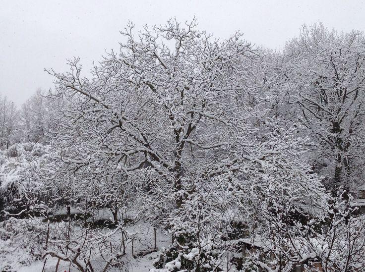 La neve a casa ha un odore speciale...profuma di ricordi,di infanzia,di magia...