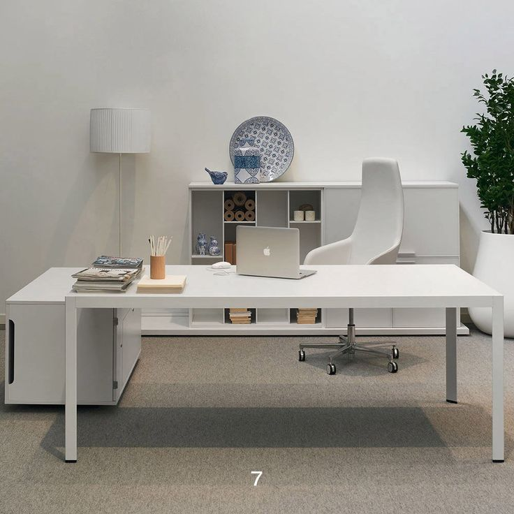Schön Sinetica Frame+ Executive Desks