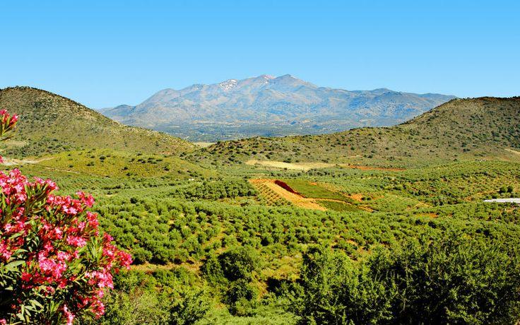 Suuri, luonnonkaunis Kreeta tarjoaa dramaattista historiaa, fantastisia rantoja, viihtyisiä tavernoja sekä antiikin kulttuuria. Tervetuloa lyömättömälle lomasaarelle! www.apollomatkat.fi #Kreeta #Kreikka