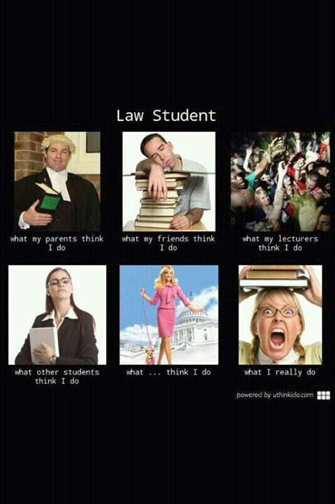You Know You Are A Law Student When 14 best You kno...