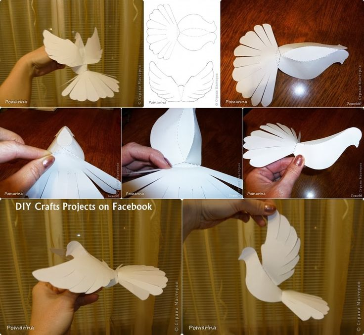 Paper dove do-it-yourself with printable pattern - edit to make other birds