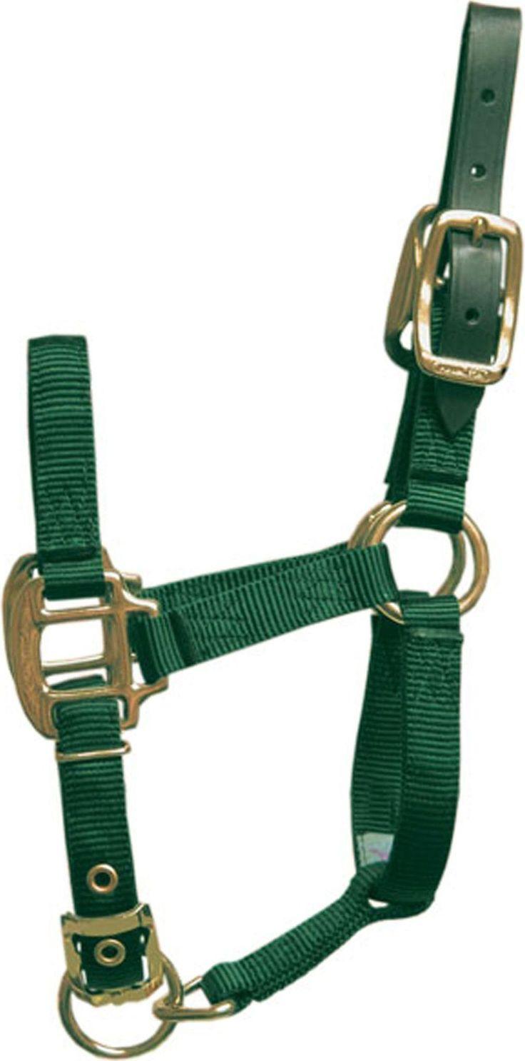 Adjustable Horse Halter With Leather Headpole