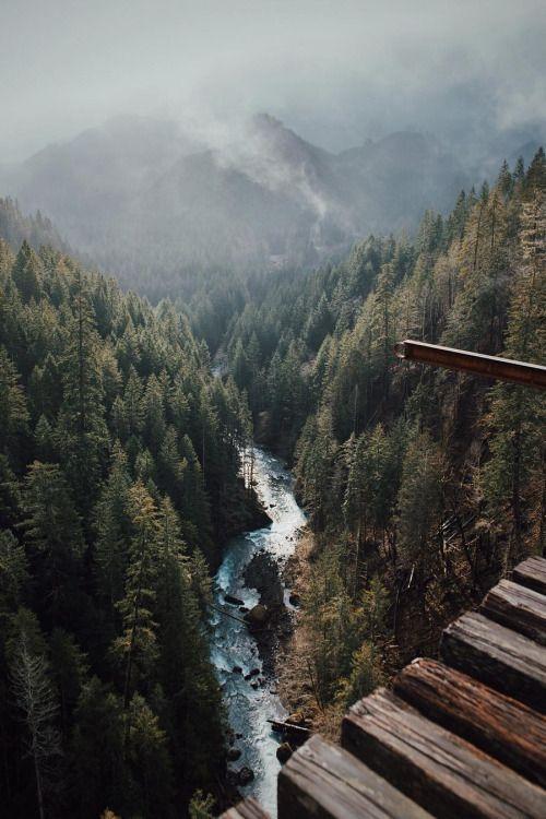 "banshy: ""Vance Creek Bridge // Shpak """