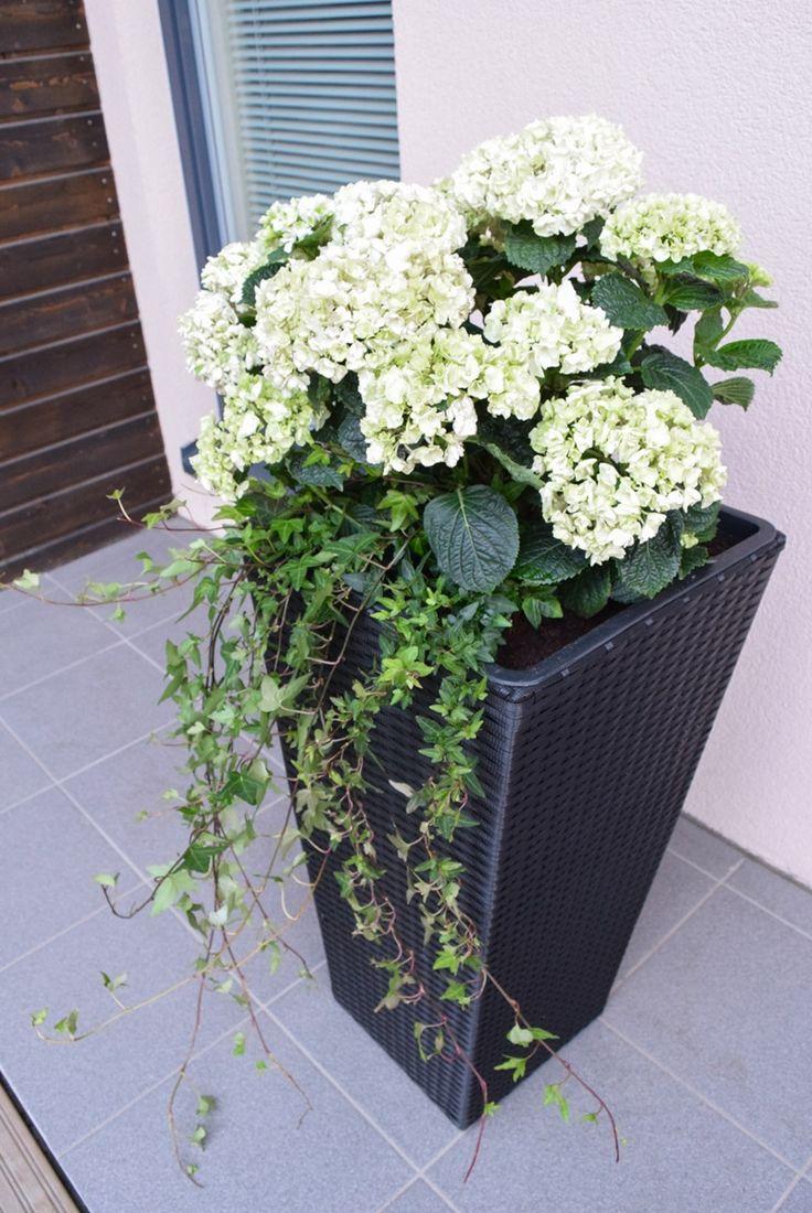 Loving white style: Etupihan terassi & Blommor ruukut