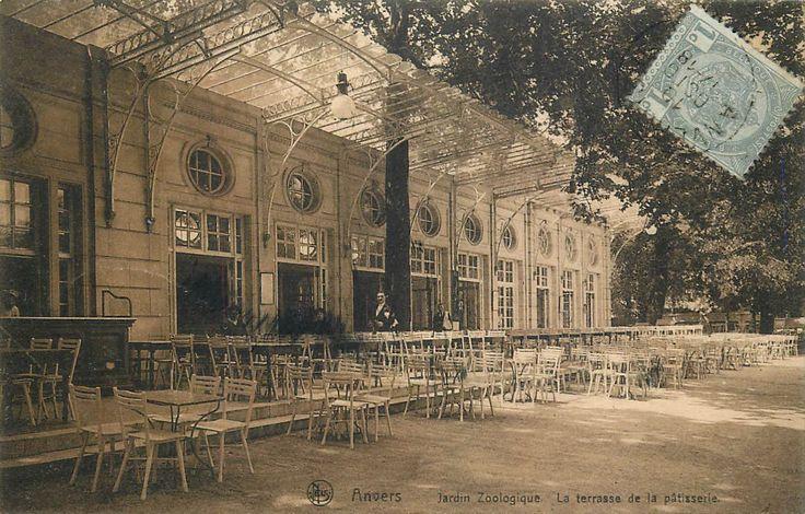 """Het  Grand Café Flamingo was oorspronkelijk een """"patisserie"""", voor de burgerij. De dierentuin was bij aanvang geen familiepark met eet- en speelgelegenheid voor onze allerkleinsten. Begin 1900 was de prentzijde nog de """"achterzijde"""" van de postkaart , de adreszijde de voorkant. Het gebouw in neo-Lodewijk XVI-stijl1 1903,  is een ontwerp van Emile Thielens. Het werd in 1946 verbouwd door René Grosemans en in 1953 door dezelfde architect uitgebreid met kraanvolière zijde station."""
