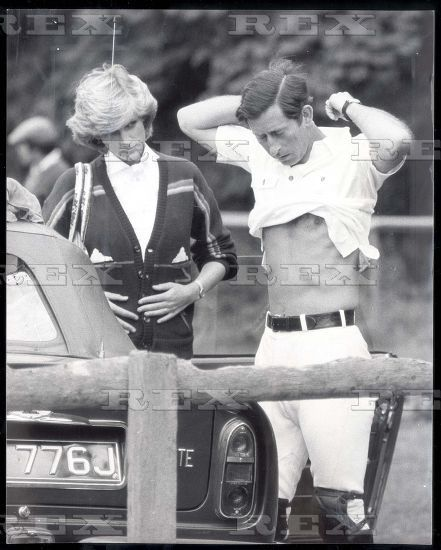 Remember Diana--- Princess of Wales and Prince Charles