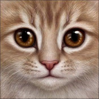 Wynn's Cat Face Avatar Request Thread {Temporary - Open!}
