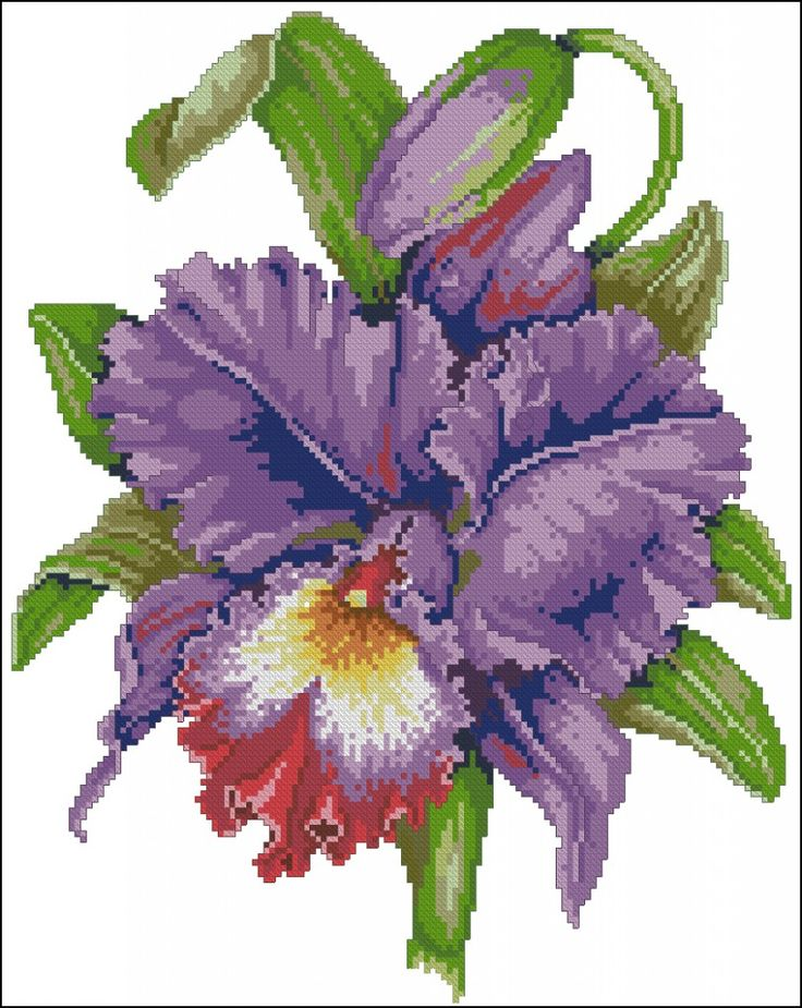 "Cross-stitch pattern ""Irises"" 