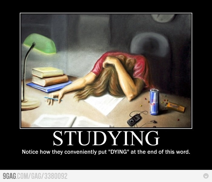 Studying.. dying