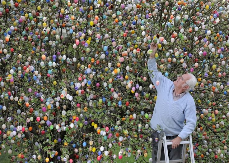The Kraft family have decorated their tree for Easter for more than forty year!   WOW! I'd like to do just some!: 9 800 Easter, At Home, Decor Trees, Trees Branches, 40 Years, Gardens Trees, Germany, Easter Eggs, Eggs Trees