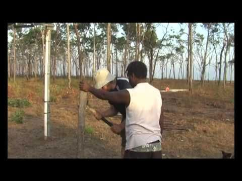 Nyinyikay: Yolngu Cultural Experience - Sharing the Spirit of the Land