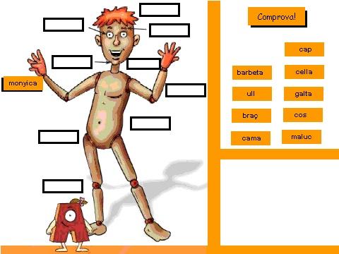 Scratch   Proyecto   Aprenem el cos humà