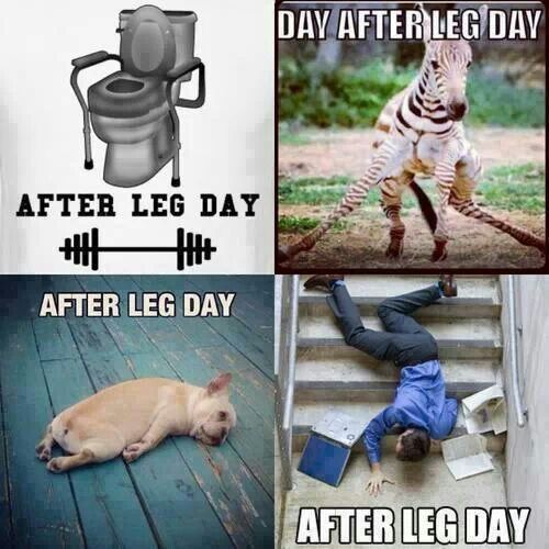 After leg day I feel like this.. | Cross fit inspiration ...