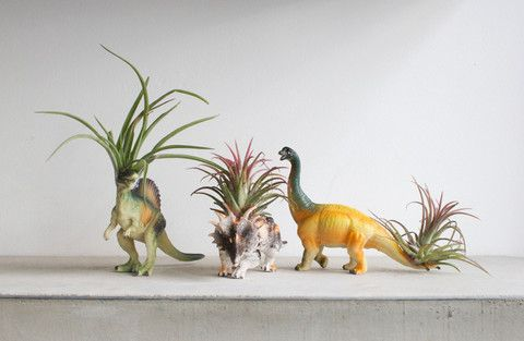 Dino Airplant by Grace & Thorn, Hackney Road