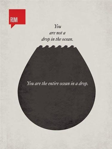 You are not a drop in the ocean. You are the entire ocean in a drop. ~Rumi Love this