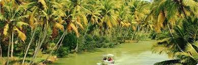 Come and explore the splendor of all these wonderments in a well managed way booking one from the many Kerala Tour Packages , Kerala Holidays, Kerala Tourism, Kerala tour operator, travel to kerala, go to kerala, india tour packages and kerala tour package from the leading tour operator cultureholidays.com.