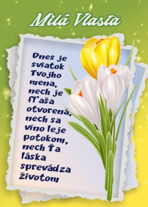 Milá Vlasta Dnes je sviatok Tvojho mena, nech je fľaša otvorená, nech sa víno leje potokom, nech Ťa láska sprevádza životom