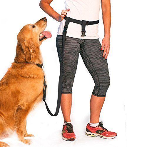 500 best Dog Training Tips images on Pinterest Dog behavior, Dog - dog trainer resume