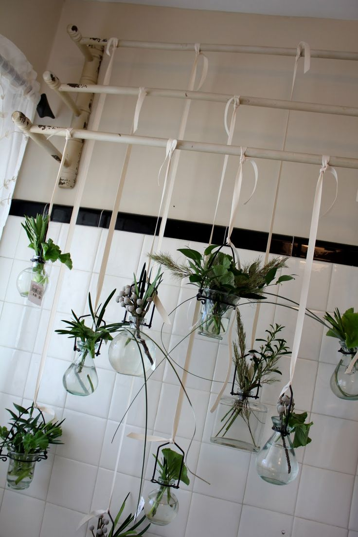 Plants In Bathroom Front Windows And Vases On Pinterest