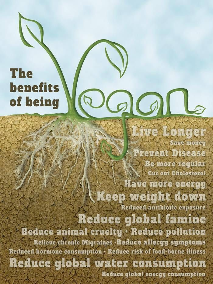 benefits of going vegetarian Are there health benefits to being a vegetarian  health benefits of being a vegetarian  i'll go into the studies related to these conditions in a little .