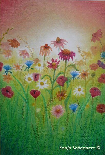 Een kleurrijke oliepastel van een zomers bloemenveld. De witte,rode en blauwe veldbloemen zijn herkenbaar door Sonja Schoppers afgebeeld.