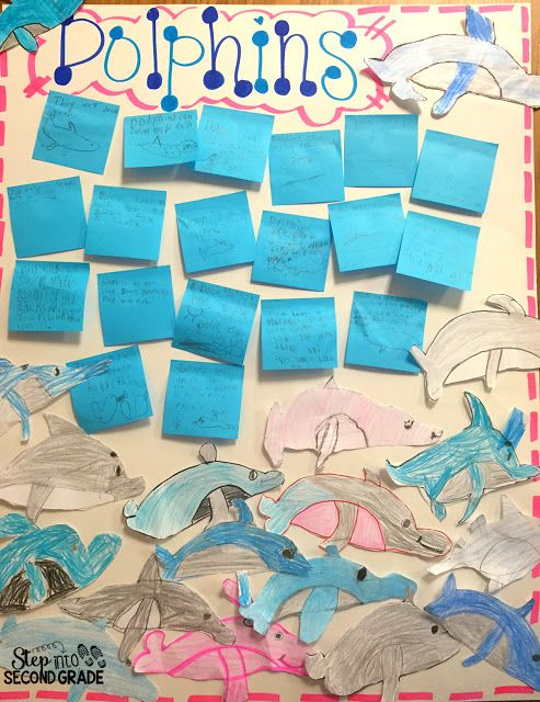 Step into 2nd Grade with Mrs. Lemons--Fun non-fiction facts about dolphins!
