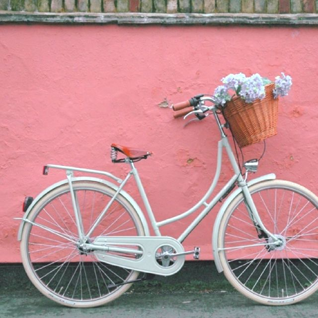 #vintage bicycle and #dainty flowers Let's go ride bikes!! (for my kids...inside joke)