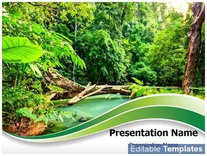 rainforest powerpoint template backgrounds 02398