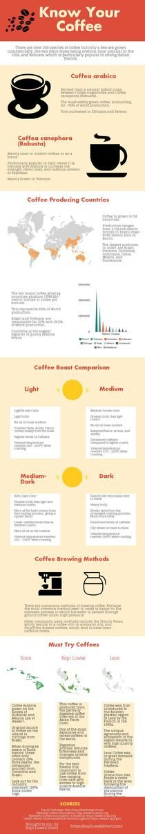 Know Your Coffee | Piktochart Infographic Editor