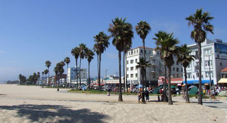 Crazy Venice beach