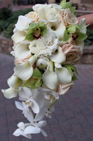 Ivory, blush and green cascading bouquet of roses, calla lilies, orchids and ranunculus