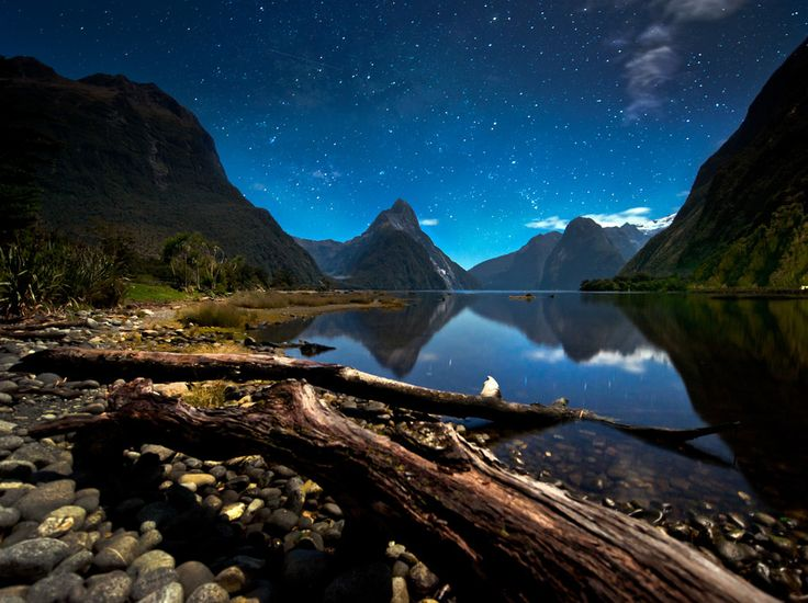 //: Coolbier Photographflickrgetti, Buckets Lists, Outdoor Image, Newzealand Landscape, Beautiful Places, Stars Milford Sound, Starsmilford Sound, Night Sky, New Zealand