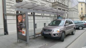 Mistrz parkowania! Warszawa 30.12.2015