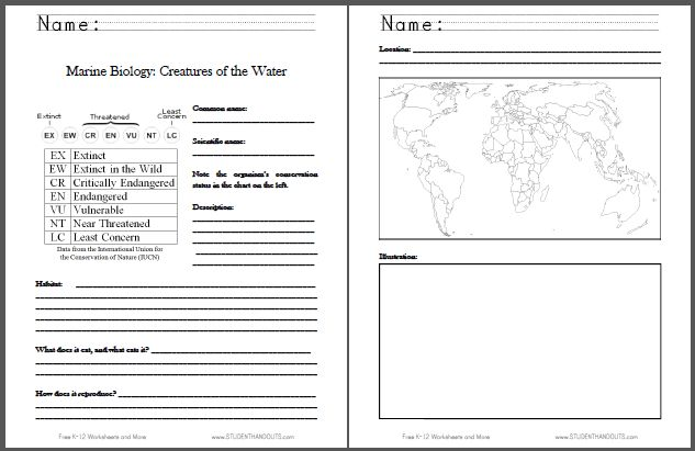 Worksheet Marine Biology Worksheets marine biology worksheets bloggakuten fact sheet each student is assigned a marine