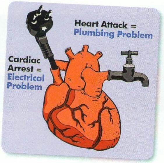 cardiology . myocardial infarction.plumbing.cardiac arrest.electrical.