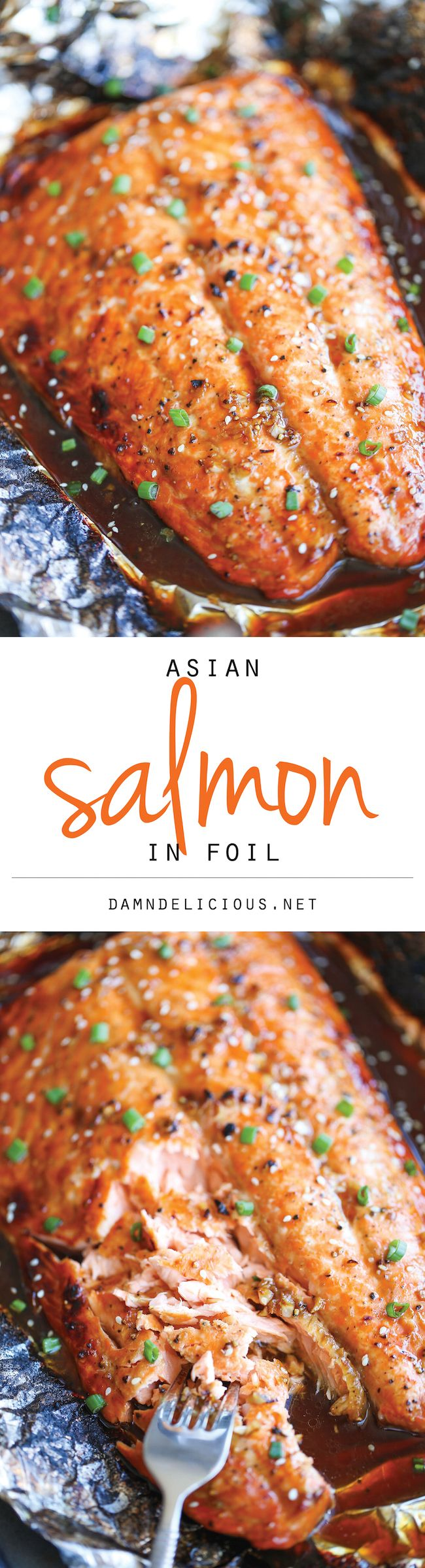 Asian Salmon in Foil  -  foil packet, honey, garlic, sesame oil and seeds, onions, veggies, ginger, spice.  sweet, hot, spicy, healthy.  want.     lj