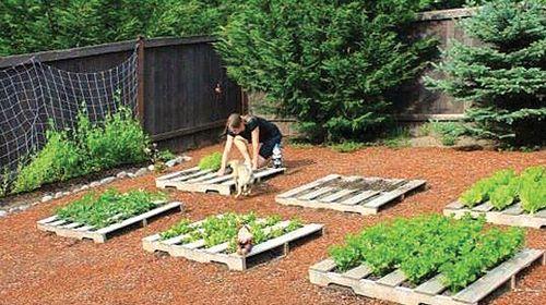 Képes kerti ötletek - Ezermester 2015/7  Kert, udvar  Pinterest