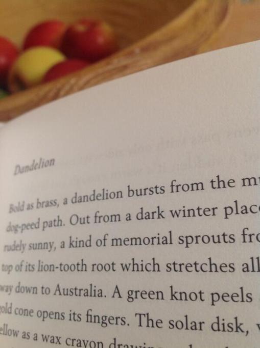 Feedback: Herbaceous by Paul Evans Tweet from @honeyscribe