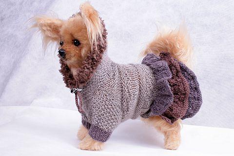 """Вязанная одежда для собак! """" Платья!"""