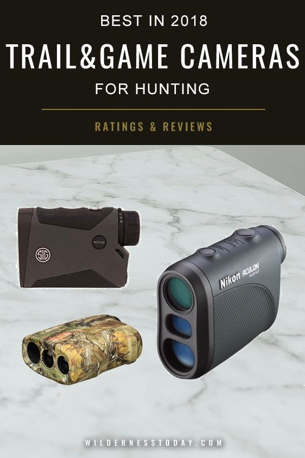 Best Rangefinders of For Bow and Rifle Hunting: Top Reviews
